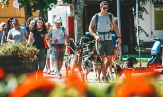 Delfi. Cerebriniu paralyžiumi serganti mergina Druskininkuose įveikė daugiau nei 12 km trasą – rekordą pasiekti padėjo šuo asistentas